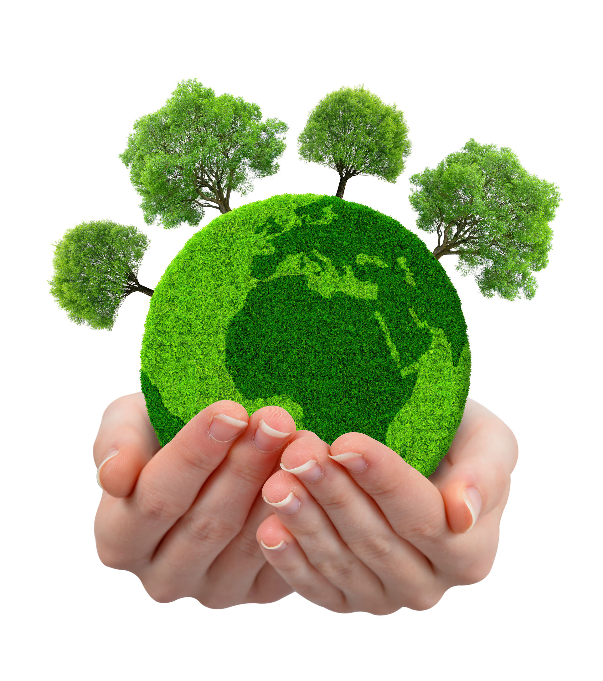 43883304 - green planet with trees in hands isolated on white background