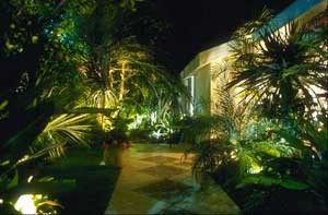 Arielouie_landscape_lighting