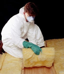 CSIRO_ScienceImage_2175_Installing_Insulation_Batts